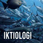 IKTIOLOGI